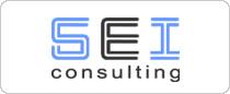 logo-seiconsulting